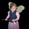 Cheap fairy wand