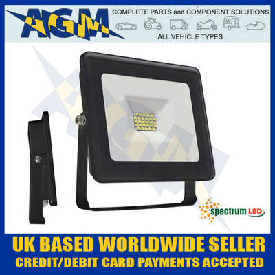 Spectrum Lux SLI029026CW Noctis 30W Led Flood Light