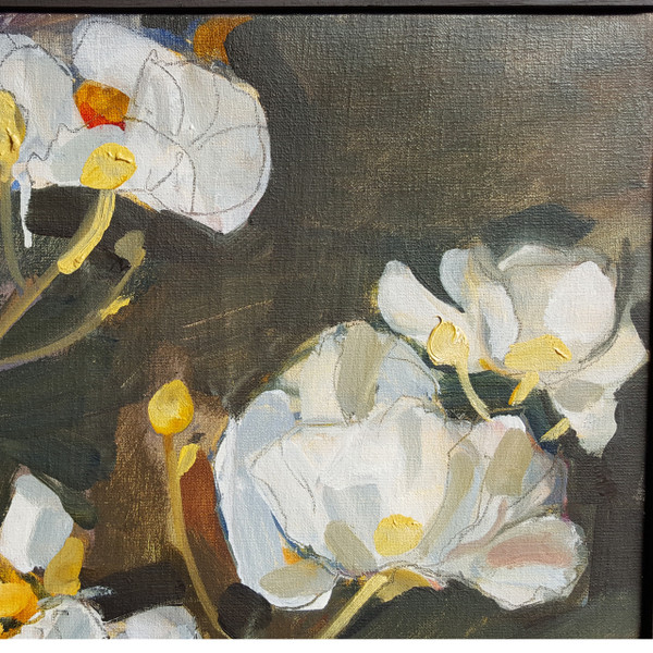 Dogwood - Oil on Canvas by Catherine McCormack