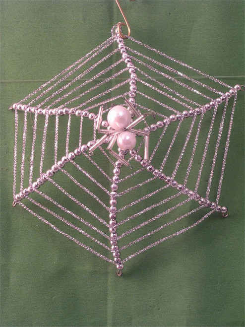 Spider on web BD304