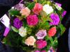 Carnation Bouquet $35 - $100