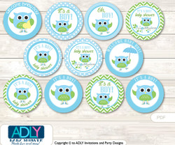 Baby Shower Boy Owl Cupcake Toppers Printable File for Little Boy and Mommy-to-be, favor tags, circle toppers, Blossom, Spring