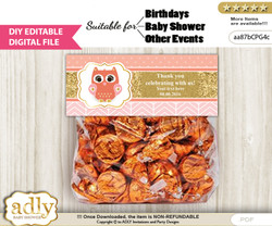 DIY Text Editable Girl Owl Goodie  Treat Bag Toppers, Favor Bag Digital File, print at home  nn