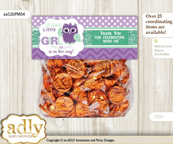 Printable Girl Owl  Treat or Goodie bag Toppers for Baby Girl Shower or Birthday DIY Purple Green, Mint