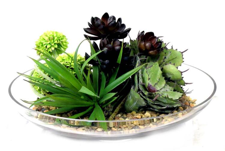 succulent assortment in glass bowl