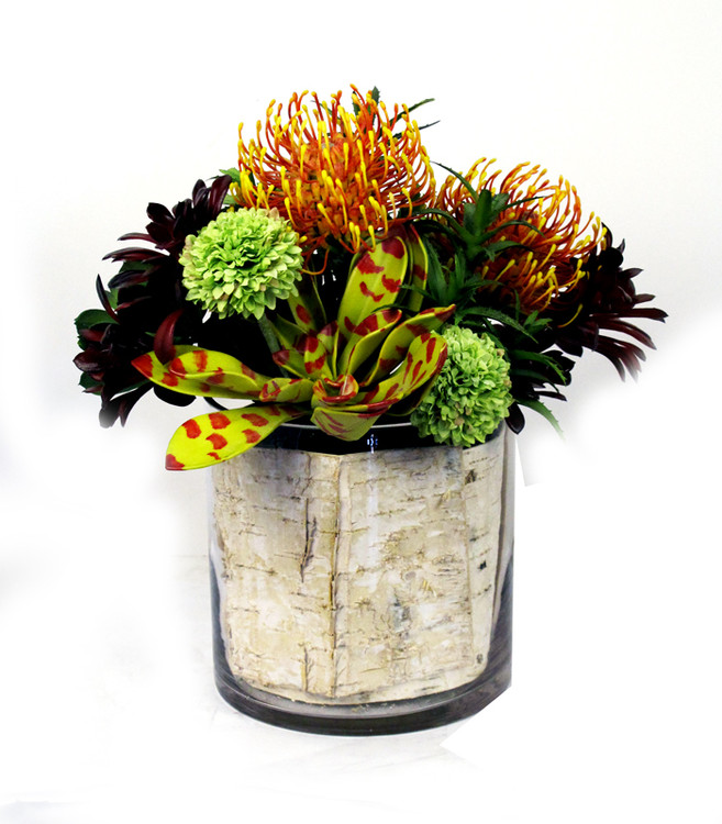 Succulents and protea in birch lined cylinder