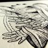 Karrie Arthurs - Hands