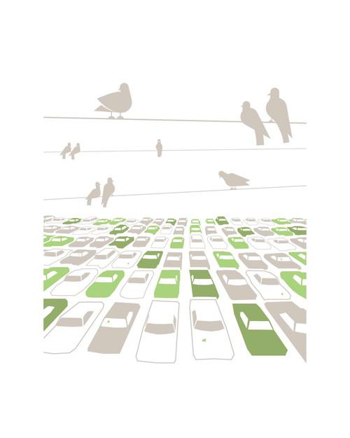 Tyler Bloomquist - Birds of a Feather