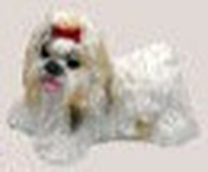 VMMP3246 - Dogs
