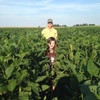 Derry Forage Soybeans