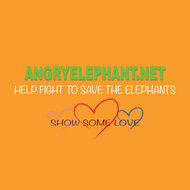 What It Means To Us - The Acronym of Angry Elephant!