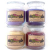 Accent Jar Candle, 16 ounce