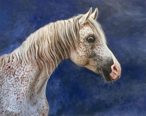 Painted Horse Commission - DEPOSIT