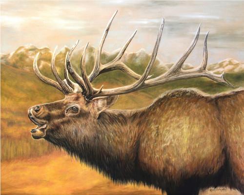 Philip's Point Elk