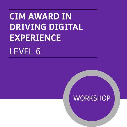 CIM Digital Diploma in Professional Marketing (Level 6) - Driving Digital Experience Module - Premium/Workshops