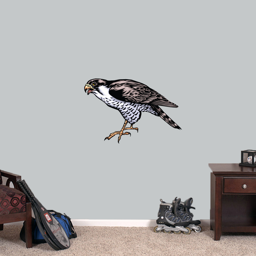 "Falcon Mascot Printed Wall Decals 24"" wide x 16"" tall Sample Image"