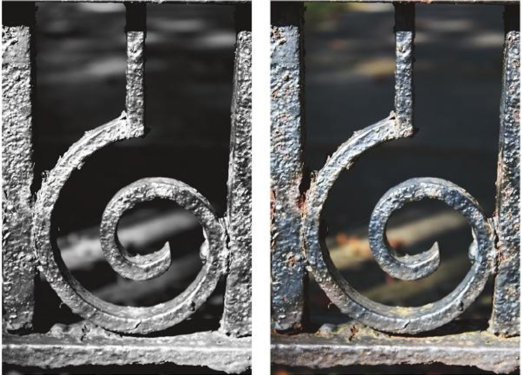 Letter Photography - Letter G - Fence Wall Art and Wall Decal Prints