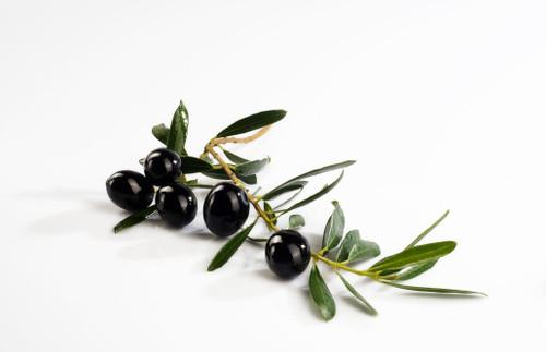 Salado House Blend Olive Oil