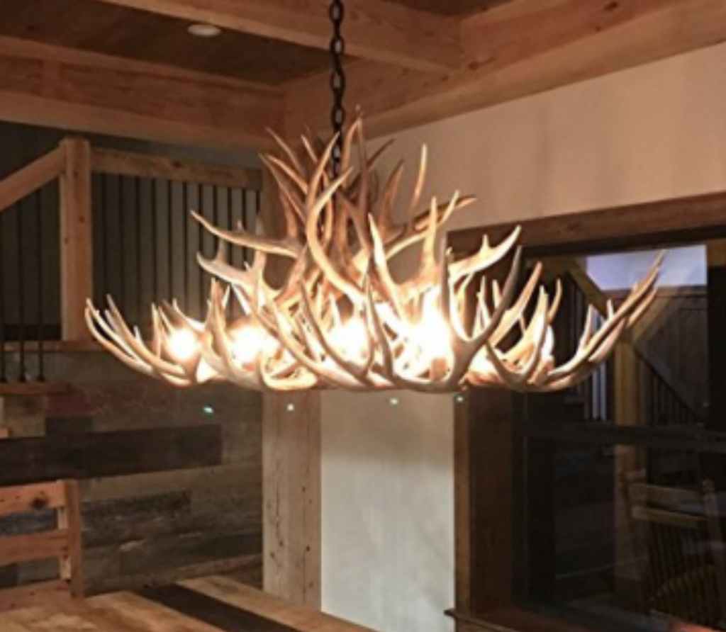 Grand Canyon Oblong Deer Antler Chandelier 50 L 30 W 20