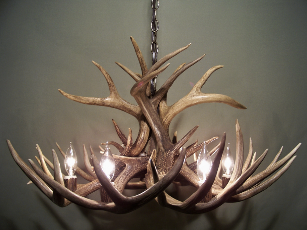 """The Illinois Deer Antler Chandelier, 30"""" Wide x 17"""" Tall, 6 or 8 Lights, Down Light"""