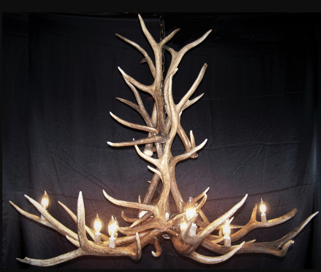 Arizona Elk Antler Chandelier, 12 Lights