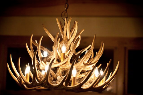"Monarch Whitetail Cast Antler Chandelier,32""Wide by 20""Tall"
