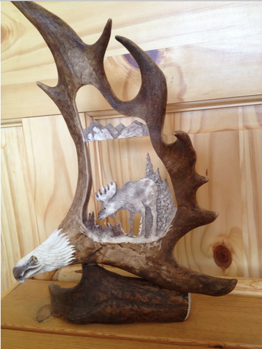 Wild Moose Antler Carving