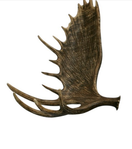 Moose Antler, Reproduction
