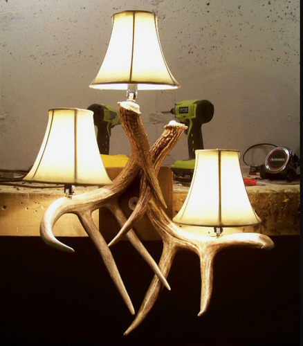 Real Deer Antler Wall Sconce