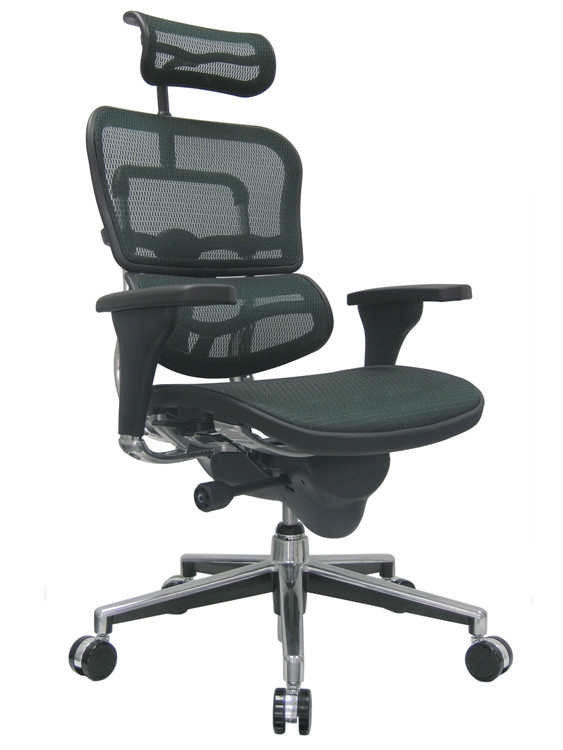 Eurotech Ergohuman High Back Office Chair in Green Mesh