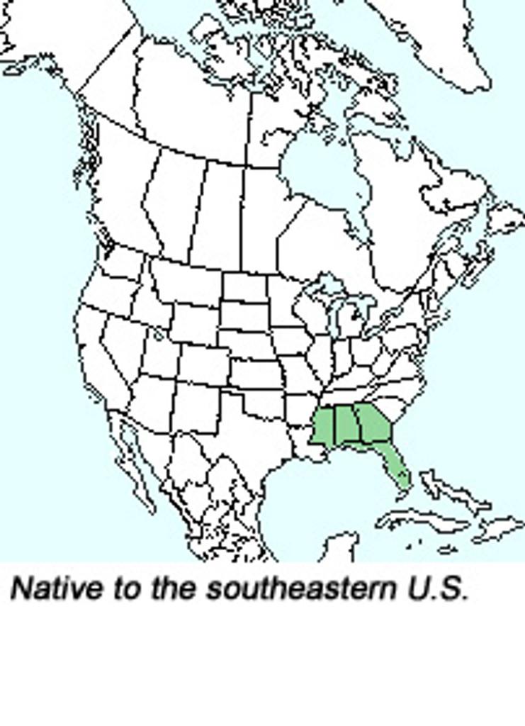 R. austrinum native range map