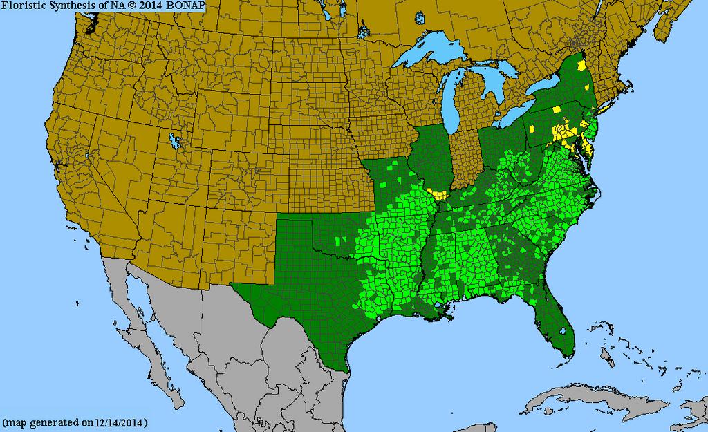 Shortleaf Pine Range Map
