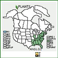 Andropogon glomeratus USA Native Range Map