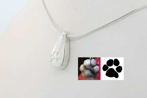 Shown with Plain Paw