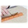 Small Garden Teifoc Brick & Mortar  Building Kit