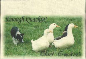 Enough Quackin! Tea Towel