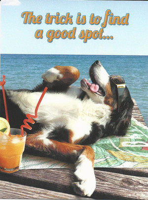 Find a Good Spot - Birthday Card