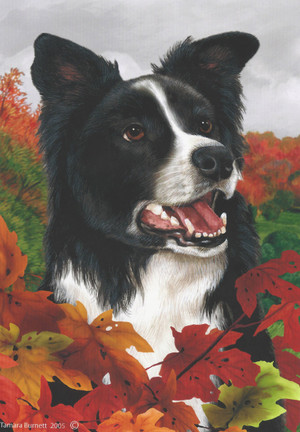 Fall Leaves Border Collie Garden Flag