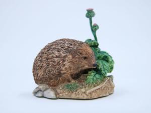 Prickly Encounter