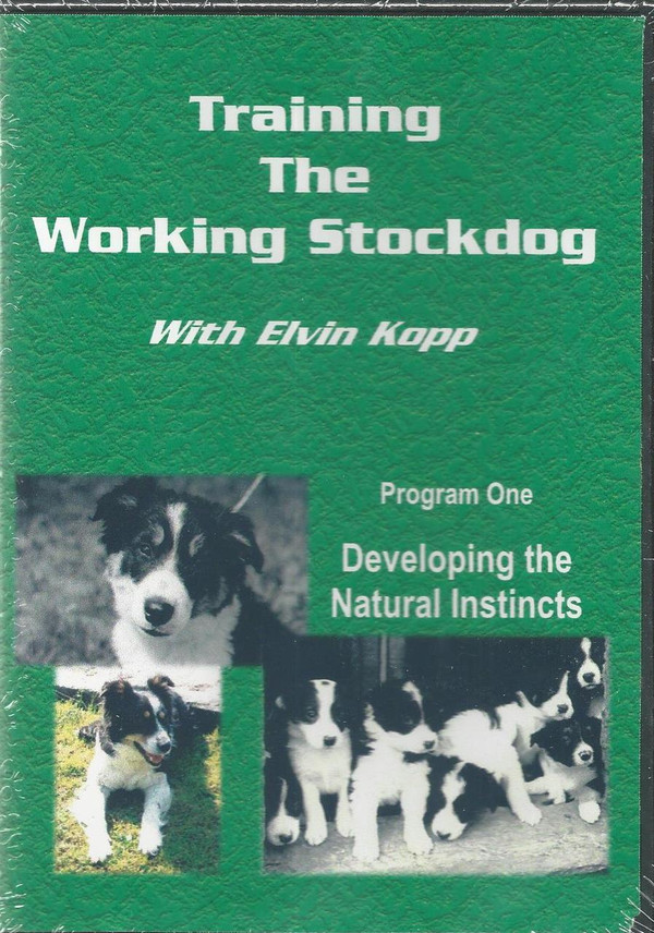 Training the Working Stockdog Program 1 - Developing the Natural Instincts