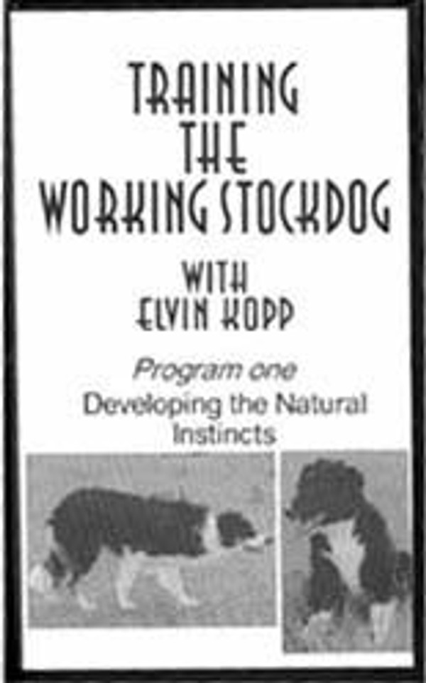 Training the Working Stockdog Tape 1 DVD