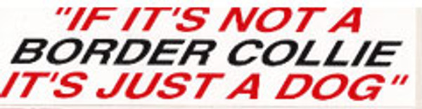 It's Not A Border Collie Bumper Sticker