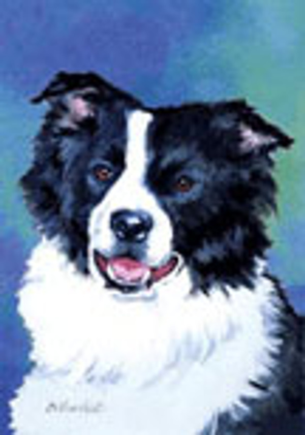 Border Collie Garden Flag by Barbara Van Vliet