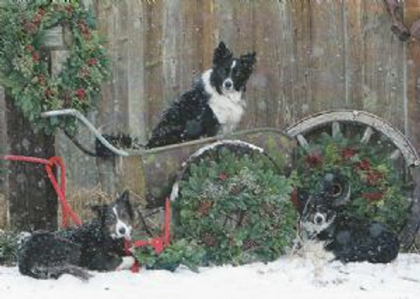 """Waiting for Christmas"" by Katariina Sutphin"