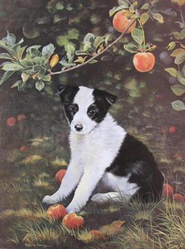Pup & Peaches