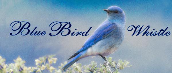 Blue Bird Delrin Whistle