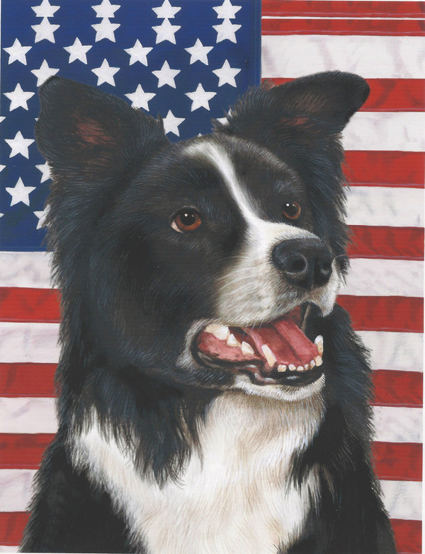 Border Collie USA Garden Flag