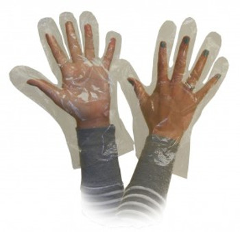 Ronco - Poly Disposable Gloves (Clear) - 10,000/Case