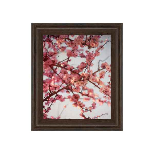 CHERRY BLOSSOMS I 22x26