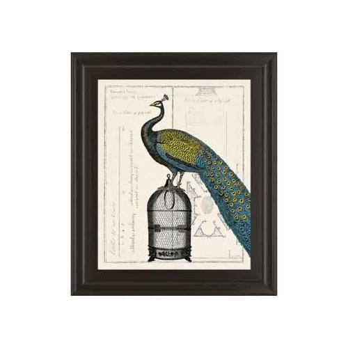 PEACOCK BIRDCAGE II 22x26